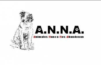 A.N.N.A.